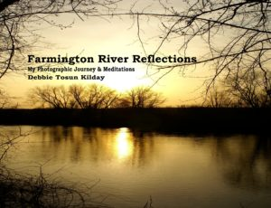 Farmington River Reflections